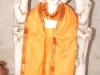 dattatreya-jayanti-2011-16
