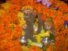 gurupurnima-2014-200