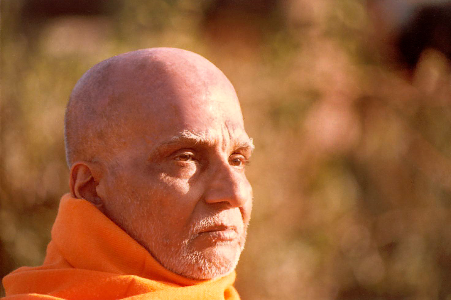 swami Swamiji himalayan yogi raj shri saraswati swami brahmananda.