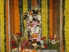 mahasivaratri-2014-193