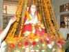 sankaracharya-jayanti2013-23