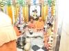 Mahasivaratri2017 (124)