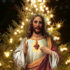 Christmas – New Year Retreat Photos, Audios/Videos